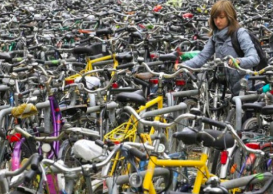 01- DEFENSORIA PÚBLICA EM AÇÃO - O caso do ladrão de bicicleta